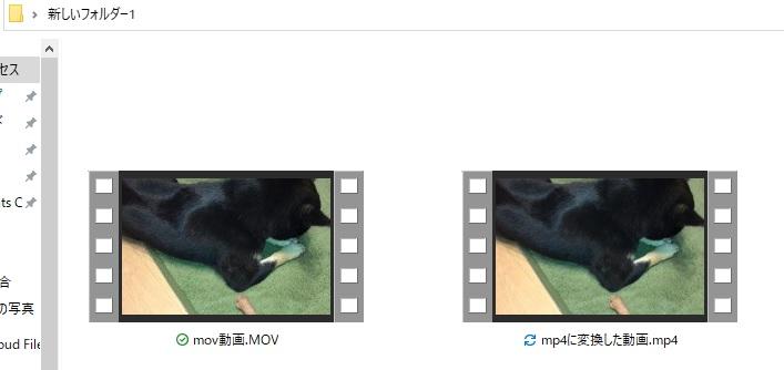 movからmp4に変換された動画